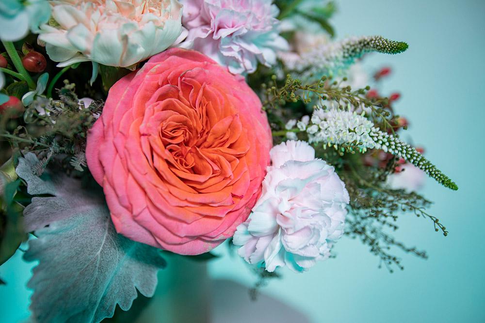 rosa-inglesa