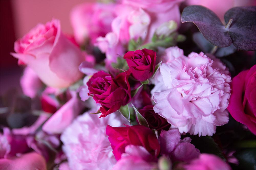 claveles y rosas