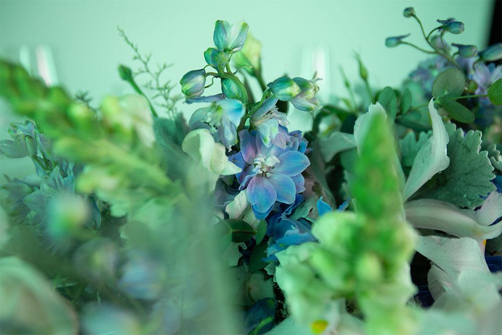 flores snapdragon lirio y rosa