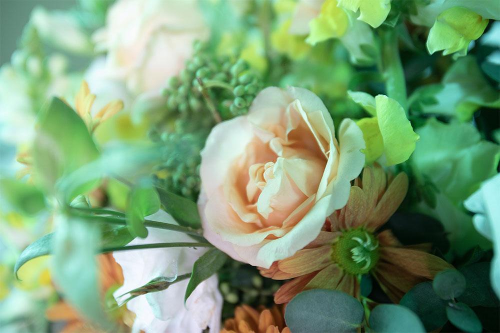 flores snapdragon