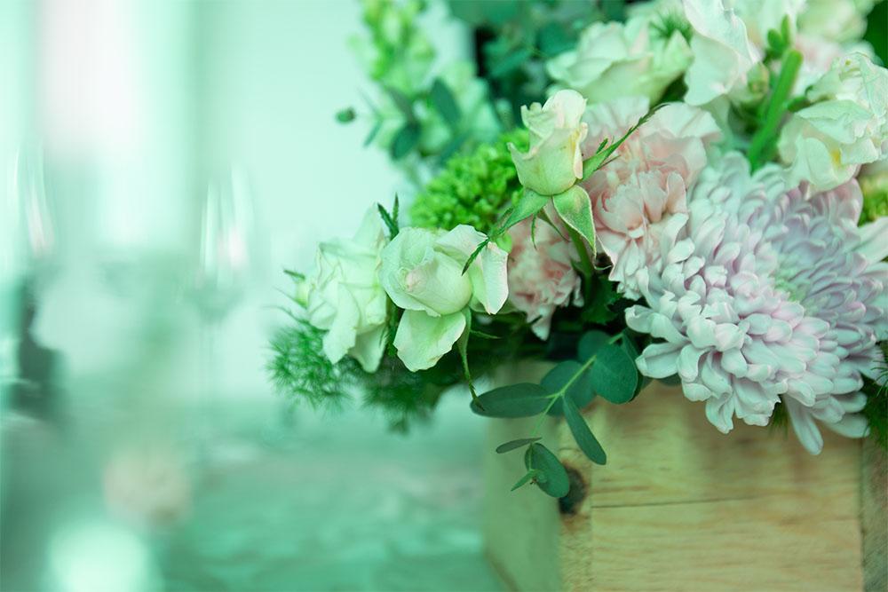 hortensia y clavel