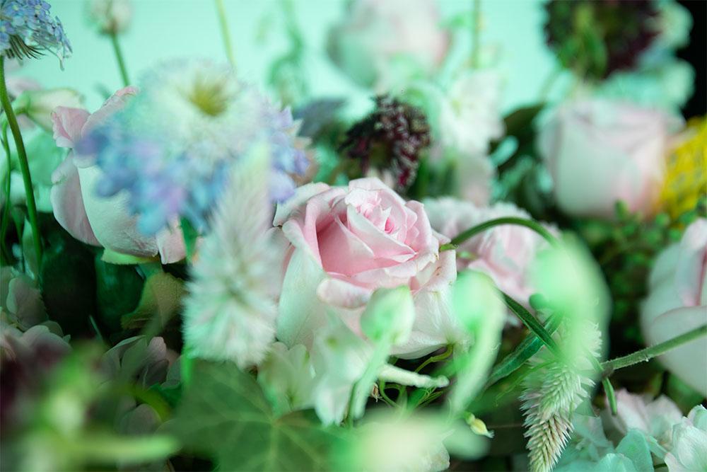 hortensias rosas y clavel