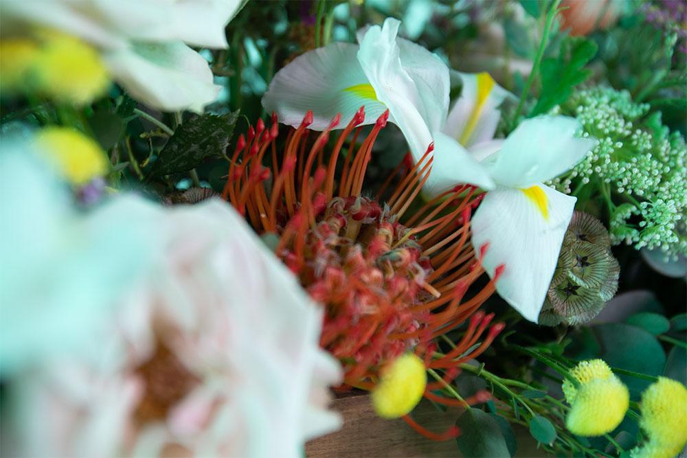 rosa lirio y eucalipto