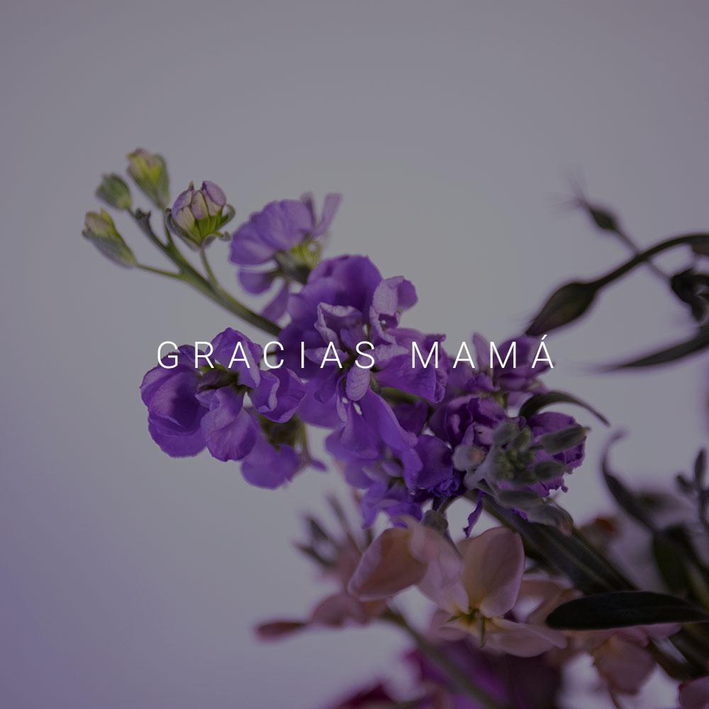gracias-mama-statice